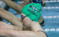 Herd swimming and diving breaks records
