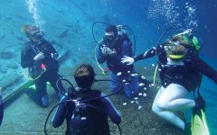 Scuba Club makes waves in Florida