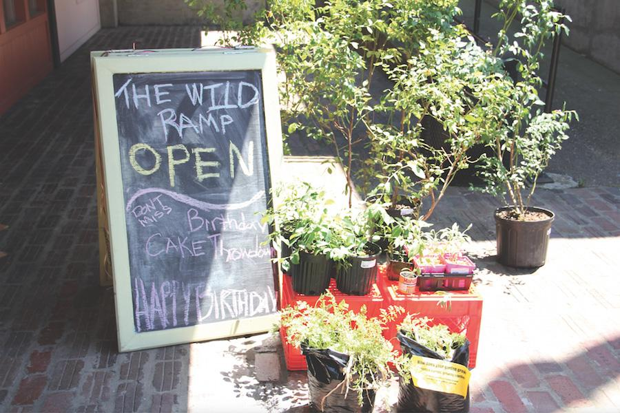 Fresh produce sits at the Wild Ramp to be sold. The Wild Ramp, located on west 14th street, sells produce and other goods from local farmers and vendors.