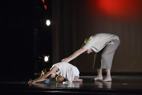 Area's only dance festival fills weekend with performances, classes