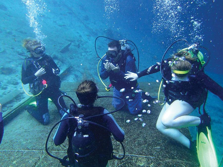 Members of the Marshall University scuba club dive in Florida during winter break.