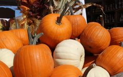 Pumpkin Festival welcomes fall to West Virginia