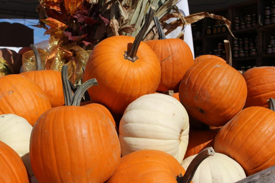 Pumpkin+Festival+welcomes+fall+to+West+Virginia