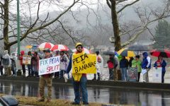 Thousands gather at West Virginia Capitol steps to protest
