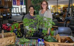 Sustainability Department Grows: weekly farmer's market and addition of Meditation Garden