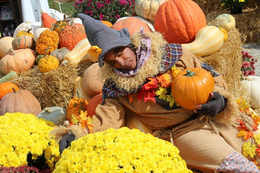Artists, musicians and business owners collaborated to celebrate West Virginia's Pumpkin Festival with attendees in fall 2017.