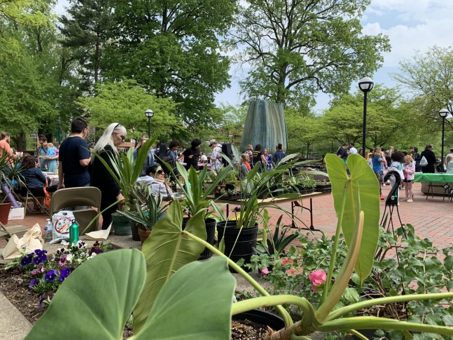 Plants are sold on the Memorial Student Center Plaza April 24 during Earth Day celebrations.