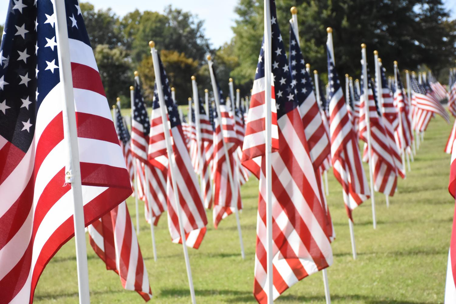 Flags planted to honor the victims of the 9/11 terrorist attacks, at a Healing Field in Huntington's Spring Hill Cemetery. Marshall President Jerry Gilbert will be a guest speaker at a memorial event at the Spring Hill Cemetery Wednesday, Sept. 11.