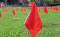 Red flags cover MSC Triangle Field.
